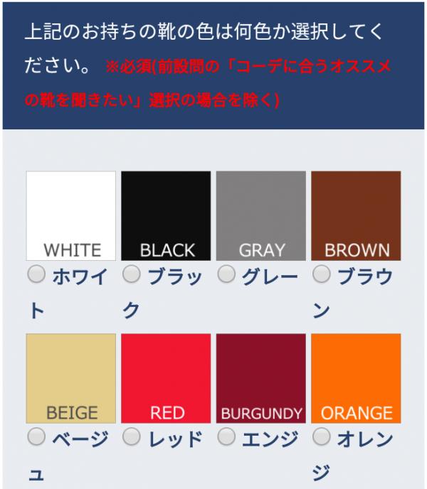 リープ(leeap)登録方法・始め方:手持ちの靴の色を選択