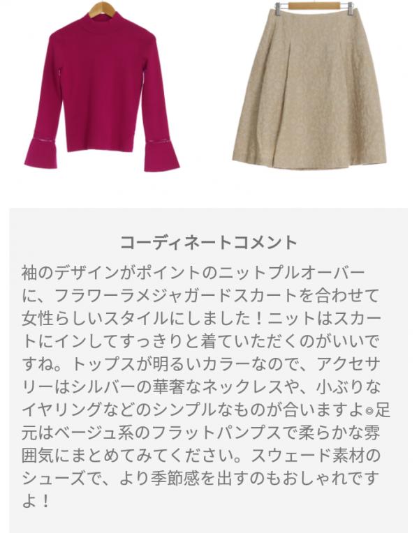ピックス(pickss)の届いた洋服のコーディネートA